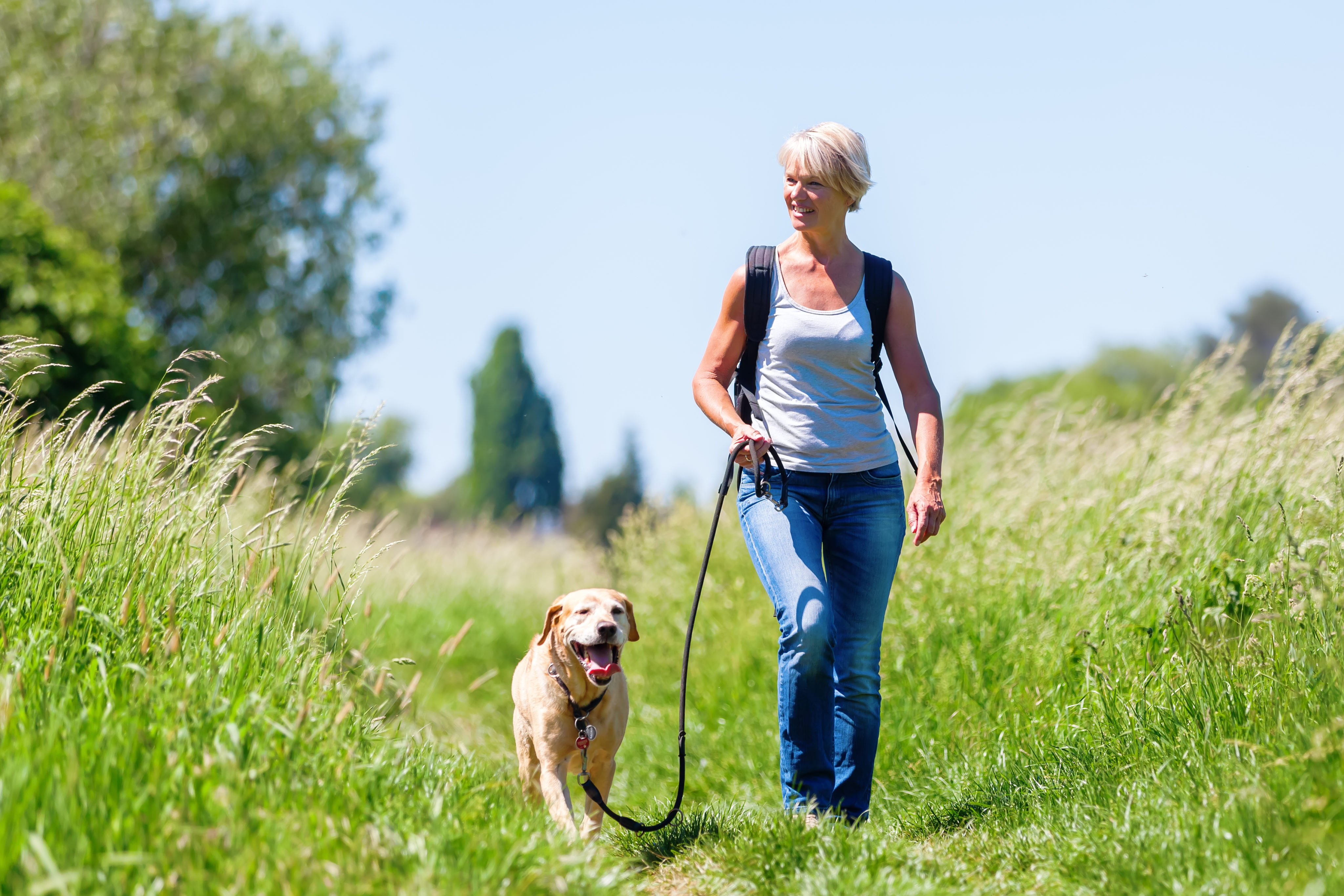 Furry Friends Dog Walking And Pet Sitting